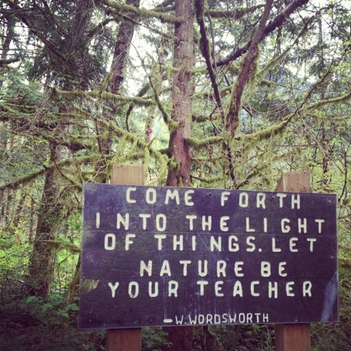 comeforthintothelight