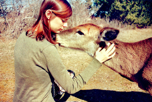 deer, kindness, love, compassion, Laina Briedis