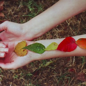 Welcome Autumn Equinox & Harvest Blessings~