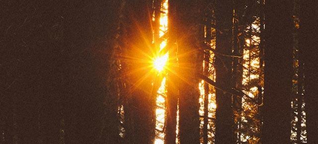 May we shine~