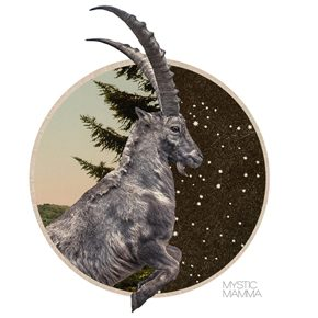 FULL MOON in Capricorn June 27th /28th  2018~